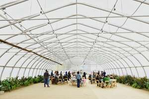 People gather in a greenhouse for a press conference at the Pitney Meadows Community Farm on Monday, Oct. 22, 2018, in Saratoga Springs, N.Y. The press conference was held to announce the Farmland for a New Generation New York program.    (Paul Buckowski/Times Union)