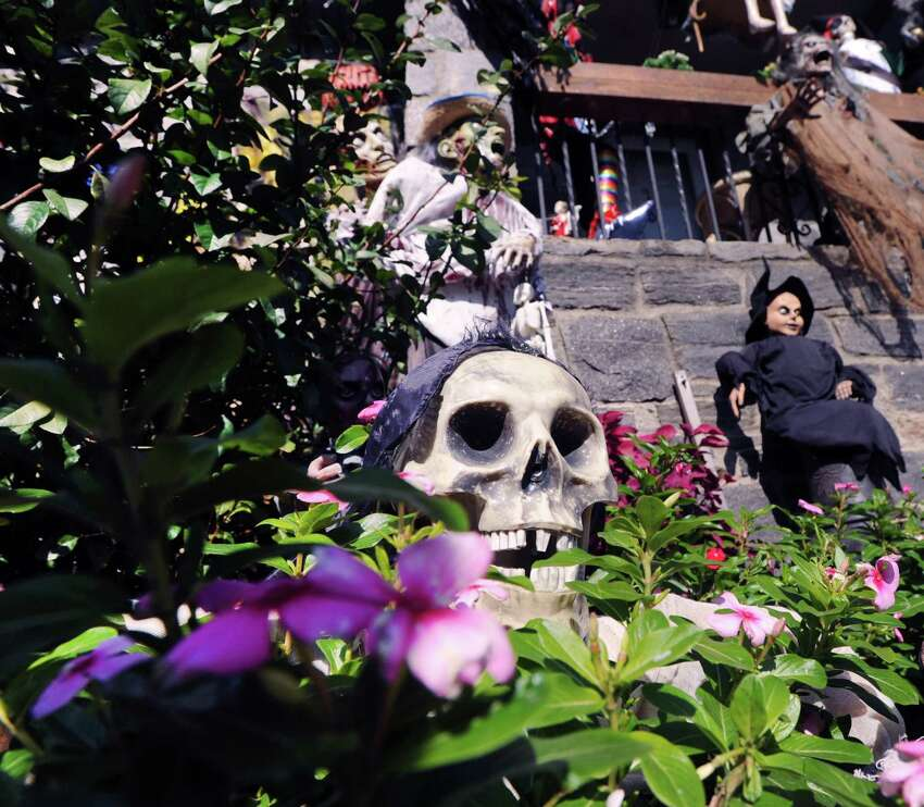 A fake skull can be seen in a bush at Rosa Bruno's Halloween-decorated home on St. Roch Avenue in the Byram section of Greenwich, Conn., Tuesday, Oct. 23, 2018.