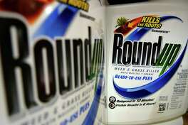 FILE - In this June 28, 2011, file photo, bottles of Roundup herbicide, a product of Monsanto, are displayed on a store shelf in St. Louis. German drug and chemicals company Bayer AG announced Monday, May 23, 2016, that it has made a $62 billion offer to buy U.S.-based crops and seeds specialist Monsanto. A Northern California judge has upheld a jury's verdict finding Monsanto's weed killer caused a groundskeeper's cancer, but slashed his $287 million award to $78 million. San Francisco Superior Court Judge Suzanne Bolanos ruled Monday, Oct. 22.