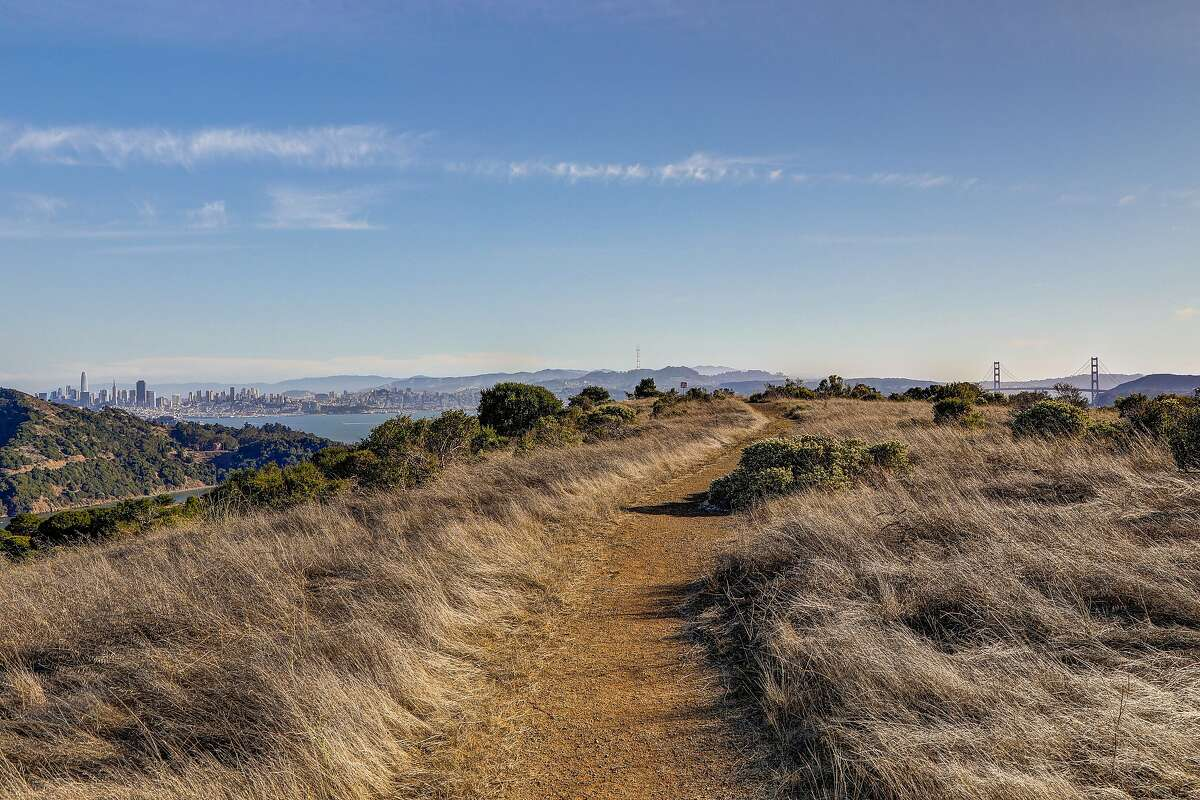 A 100-acre piece of open space on a hillside in Tiburon goes on the market Thursday for the first time in about 50 years. With an asking price of $110 million, it is said to be the most expensive property ever offered in Marin County.