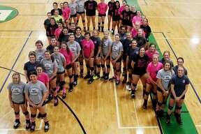 Dig Pink Cancer Fundraiser