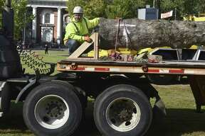 New Haven, Connecticut - Thursday, October 25, 2018: New Haven Parks and Trees employee Stan Johnson waits to assist in the installation Thursday of New Haven's 60-foot 9,000-pound Holiday Tree on the New Haven Green.