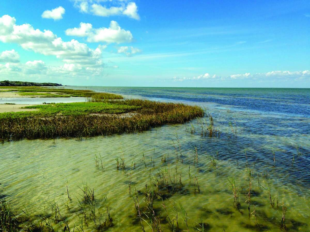 Coastal marsh shallows on Matagorda Bay at Powderhorn Ranch.