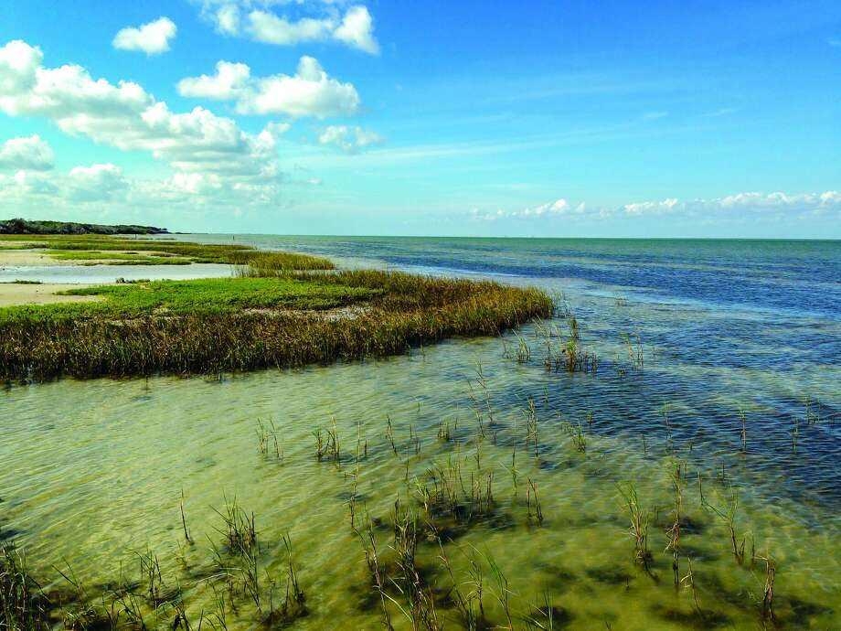 Coastal marsh shallows on Matagorda Bay at Powderhorn Ranch. Photo: Courtesy Of Texas Parks And Wildlife Department