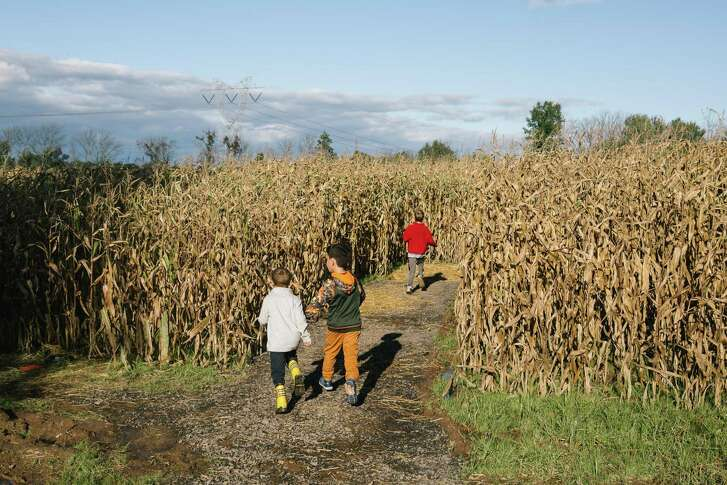 Children walk through the Haunted Corn Maze at Rustic Valley Orchard in Chalfont, Pennsylvania, U.S., on Saturday, Oct. 13, 2018. Agritourism was supposed to be a profit bonanza for Tabora Farms, in Bucks County, Pennsylvania, and other family-owned U.S. farms that have jumped on the rural land-use trend. Instead, some are running into homeowner gripes and legal bills while homebuilders, eager to turn fields into luxury subdivisions, circle with offers of quick-and-easy riches.