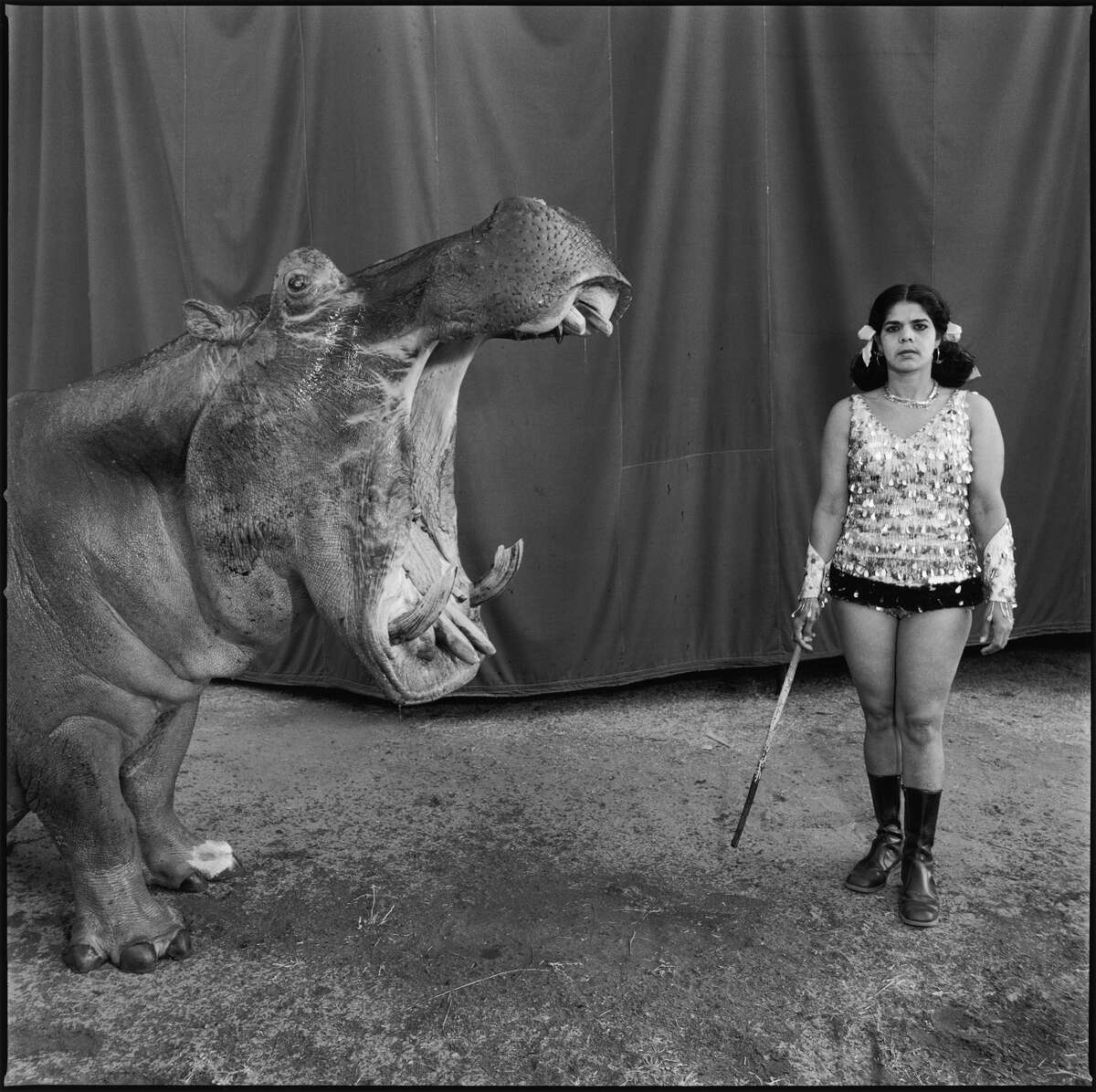 """Magnum Photos and the Aperture Foundation are putting more than 100 iconic, fine-art photos up for sale through Nov. 2. The theme of the sale is """"crossings."""" We've selected 15, beginning with a circus photograph by the late Mary Ellen Mark; more can be found here. Mary Ellen Mark: Hippopotamus and Performer, Great Rayman Circus. Madras, India. 1989. © Mary Ellen Mark courtesy Aperture """"Photographing the Indian circus was one of the most beautiful, joyous, and special times of my career. I was allowed to document a magic fantasy that was, at the same time, all so real. It was full of ironies, often humorous and sometimes sad, beautiful and ugly, loving and at times cruel, but always human. The Indian circus is a metaphor for everything that has always fascinated me visually."""""""