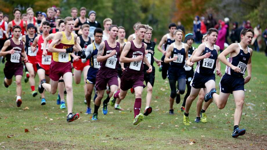 Division 4 Boys Cross Country Regional Photo: Paul P. Adams/Huron Daily Tribune