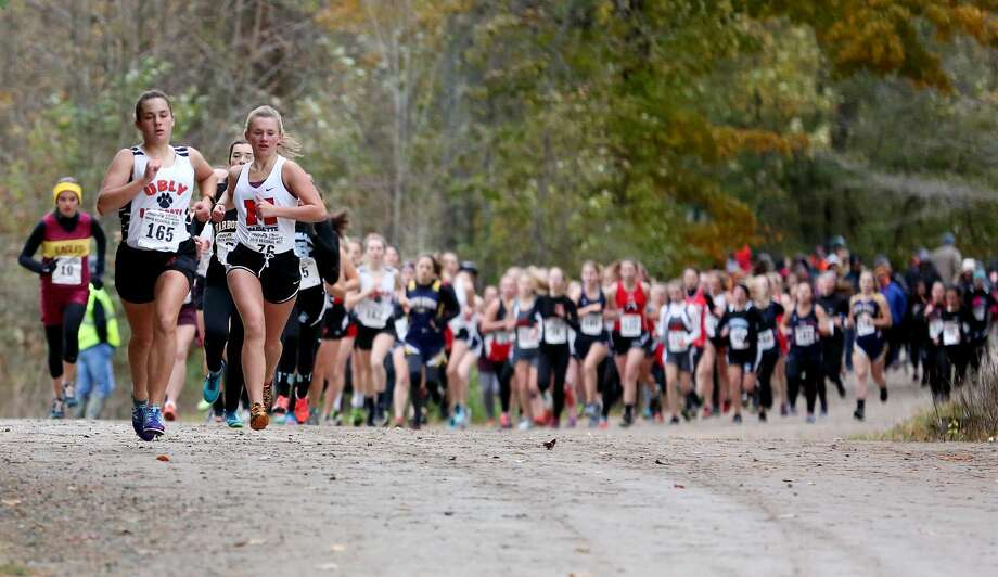 Division 4 Girls Cross Country Regional Photo: Paul P. Adams/Huron Daily Tribune