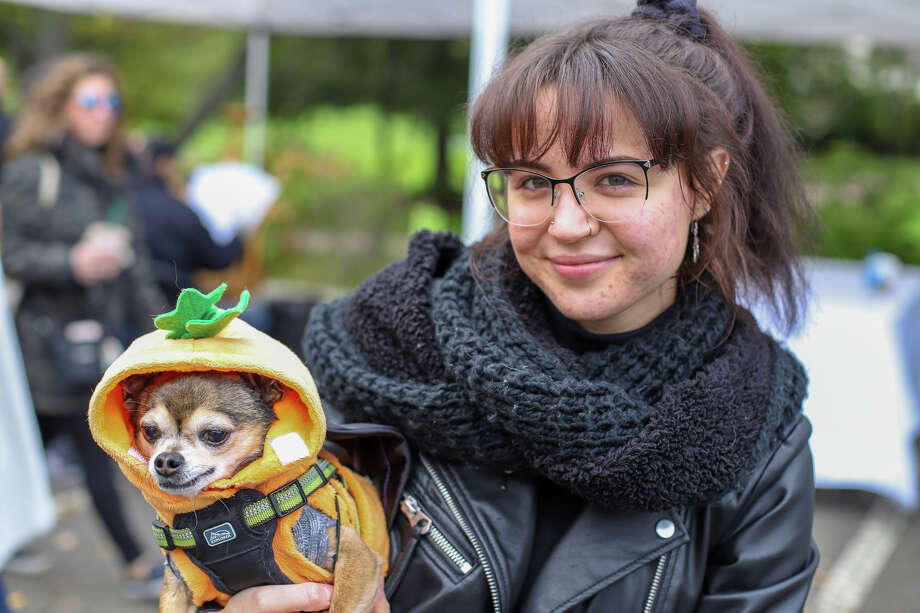 The annual Howl and Prowl dog costume contest was held in Greenwich on October 28, 2018. Hosted by Pet Pantry Warehouse, the event benefits Adopt-A-Dog, which aims to find homes for unwanted or abandoned dogs. Were you SEEN? Photo: Ken Honore, Direct Kenx Media