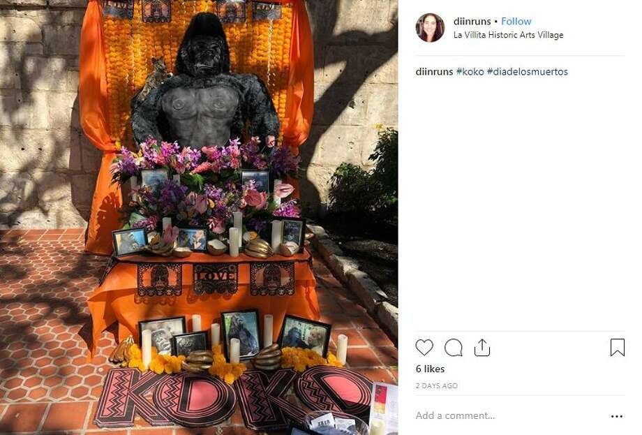 One alter maker paid tribute to Koko, the gorilla who could communicate using sign language and died at age 46. Click through the slideshow to see photos of other alters at the Dia de los Muertos festival at La Villita over the weekend. 