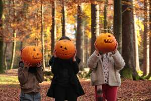 Two girls and a boy are playing halloween in the woods, covering their faces with carved pumpkins.