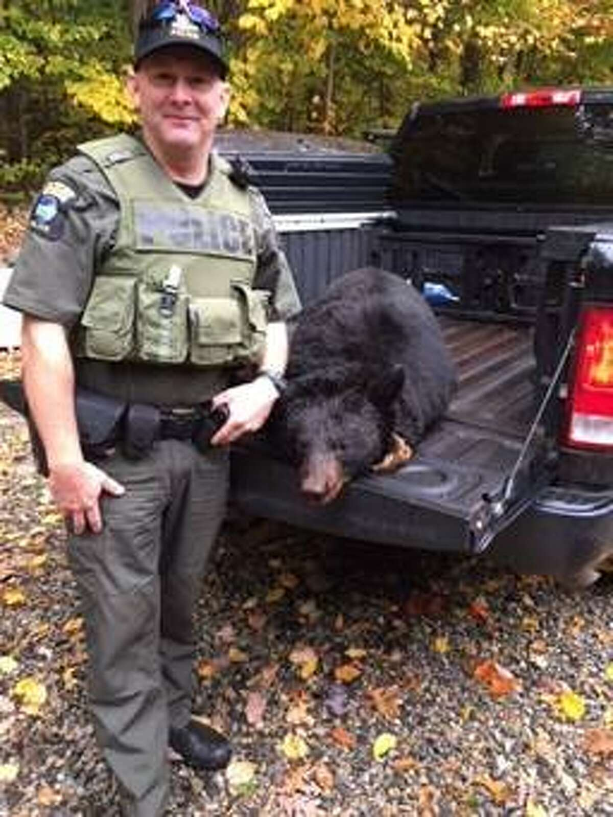 State Environmental Conservation Officer George LaPoint stands with the seized remains of an illegally hunted bear on Oct. 12, 2018, in Stony Creek, Warren County, N.Y.