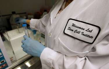New immune system therapy for blood cancer shows promise