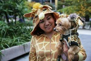 Adrienne Fidelino and her dog Toby wear matching giraffe costumes on Halloween outside the Amazon Spheres, Oct. 31, 2018.