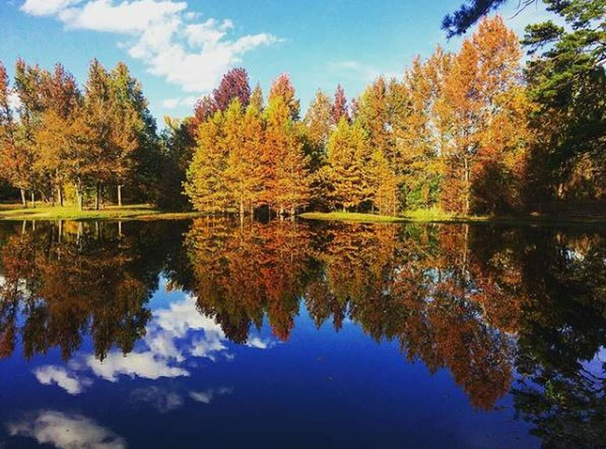Click through the slideshow to see places in Texas that offer good views of fall foilage.