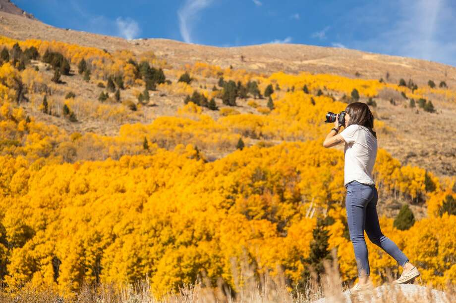 June Lake Loop in Mono County had one of the best fall foliage seasons in recent memory. Photo: Josh Wray/CaliforniaFallColor.com