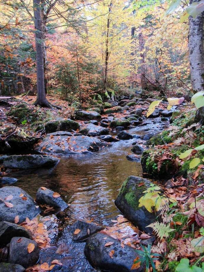 Clifton Park resident Maryellen WanderEyer visited the Keene Valley in the North Country recently, snapping a photo of Gulf Brook.