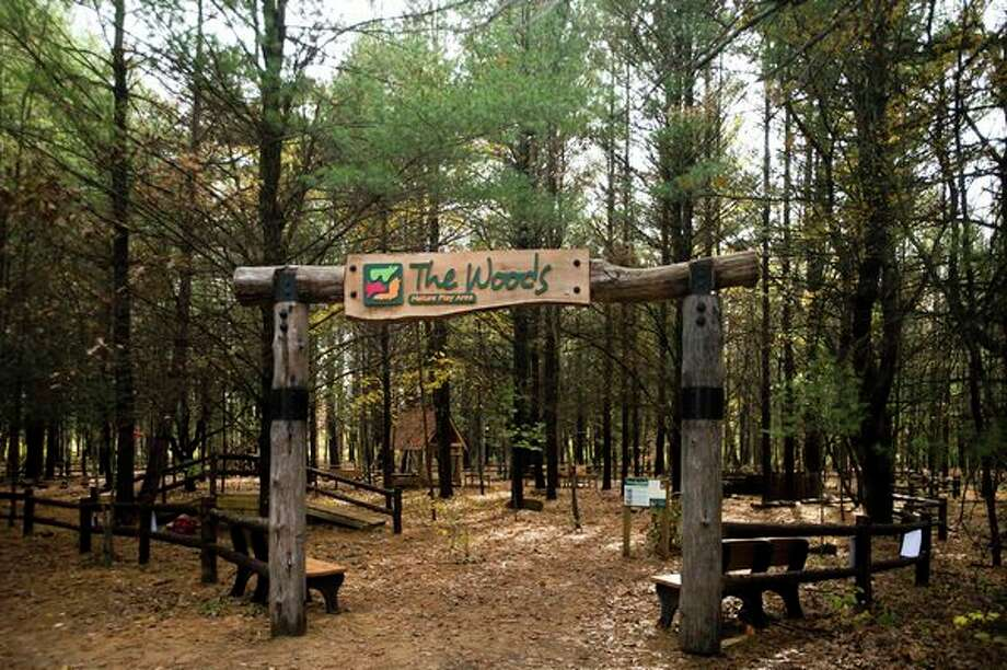 Just a few yards from the Chippewa Nature Center visitor center, adjacent to the parking lot is The Woods Nature Play Area. After a soft open this summer, The Woods is now available for kids of all ages to interact with nature and each other. (Katy Kildee/kkildee@mdn.net)