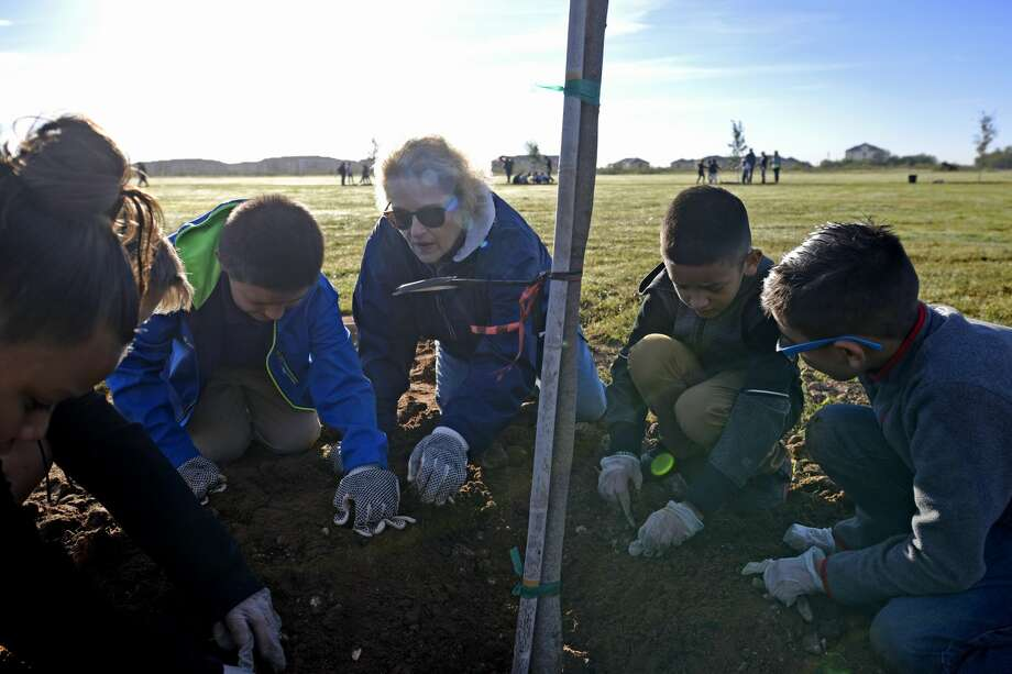 Doreen Womack, executive director of Keep Midland Beautiful, works on a KMB tree planting project with Parsley Energy volunteers and Travis Elementary Students, Nov. 2, 2018, at Dunagan Park. James Durbin/Reporter-Telegram Photo: James Durbin