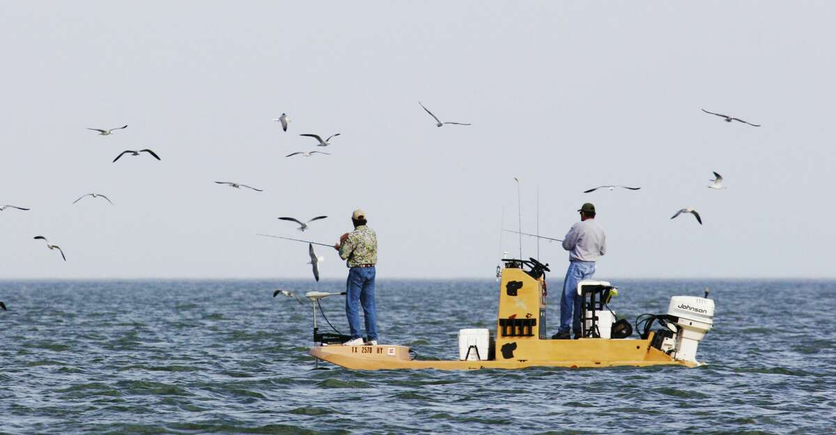 Flocks of wheeling, diving gulls and terns bird-dogging schools of speckled trout and other predator fish gorging on migrating white shrimp can point anglers to some fast fall fishing in bays along Texas' upper and middle coast.