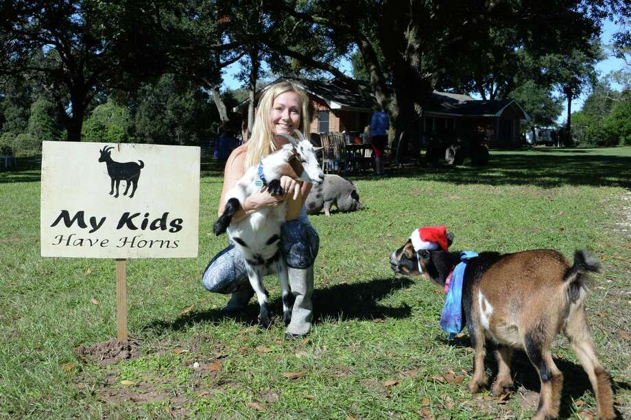 """Owner Tiffany Thompson poses with two of her """"helpers"""" and a pig named Scarlett at Goat Yoga Katy-Fulshear in Fulshear, TX on Friday, November 2, 2018. Photo: Craig Moseley, Houston Chronicle / Staff Photographer / ©2018 Houston Chronicle"""