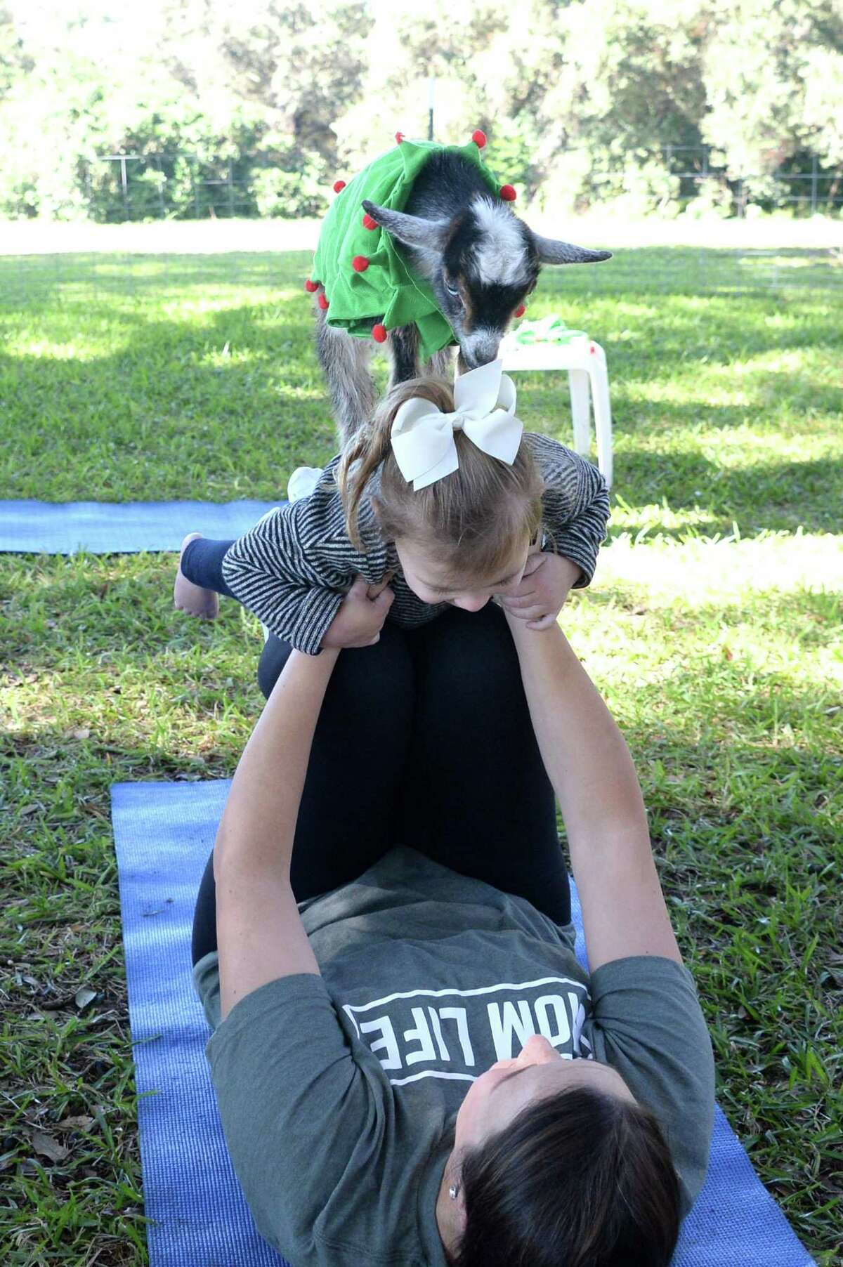 Goat Yoga Katy-Fulshear 7738 Katy Fulshear Road, Fulshear Those looking for a kid and animal-friendly workout can check out Goat Yoga in Fulshear.
