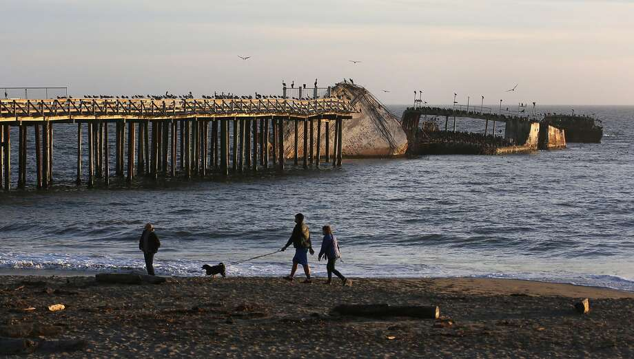 Seabirds perch on the remains of the S.S. Palo Alto near Aptos. Photo: Patrick Tehan / Special To The Chronicle