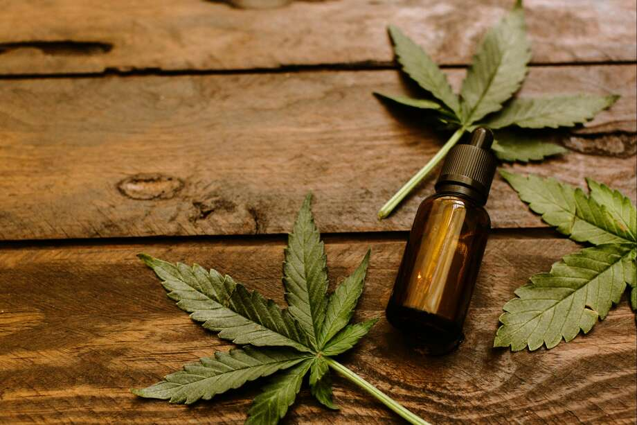 Hemp Oil Vs Cbd Oil What S The Difference Westport News