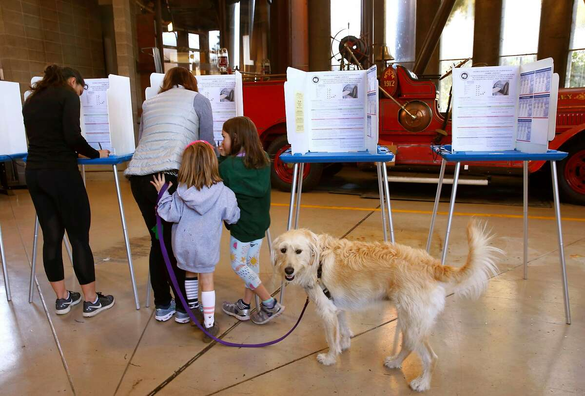 Audrey, 6, and Caroline, 8, and their dog Bailey watch their mother Caitlin Glasscock mark her ballot at a polling place at Fire Station No. 4 in Berkeley, Calif. on Tuesday, Nov. 6, 2018.