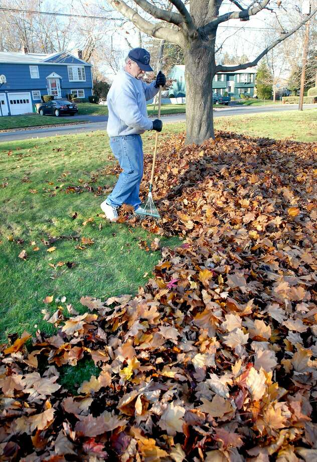 A man rakes leaves in front of his house. Photo: File Photo