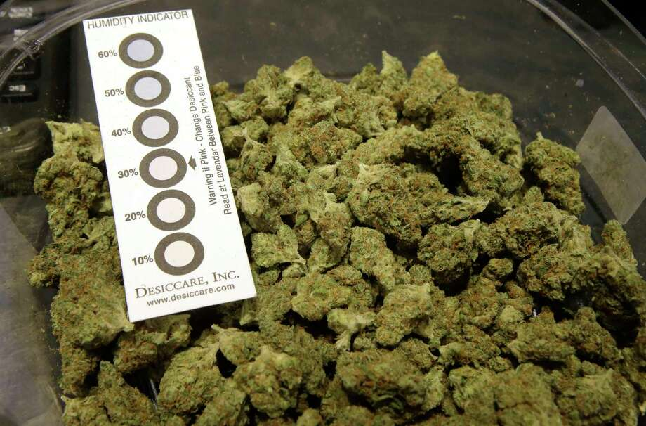 """In this Wednesday, Oct. 17, 2018 photo a humidity indicator rests in a bowl of a strain of cannabis called """"Walker Kush"""" at New England Treatment Access medical cannabis dispensary, in Northampton, Mass. The Walker Kush strain of cannabis is intended for legal recreational consumption once cannabis products can be sold legally in the state. Within days perhaps, the medical marijuana dispensary in Northampton expects to receive the final go-ahead to throw its doors open to anyone 21 or older who wants to purchase cannabis products ranging from flower to edibles, creams and even suppositories. Photo: Steven Senne, AP / Copyright 2018 The Associated Press. All rights reserved"""