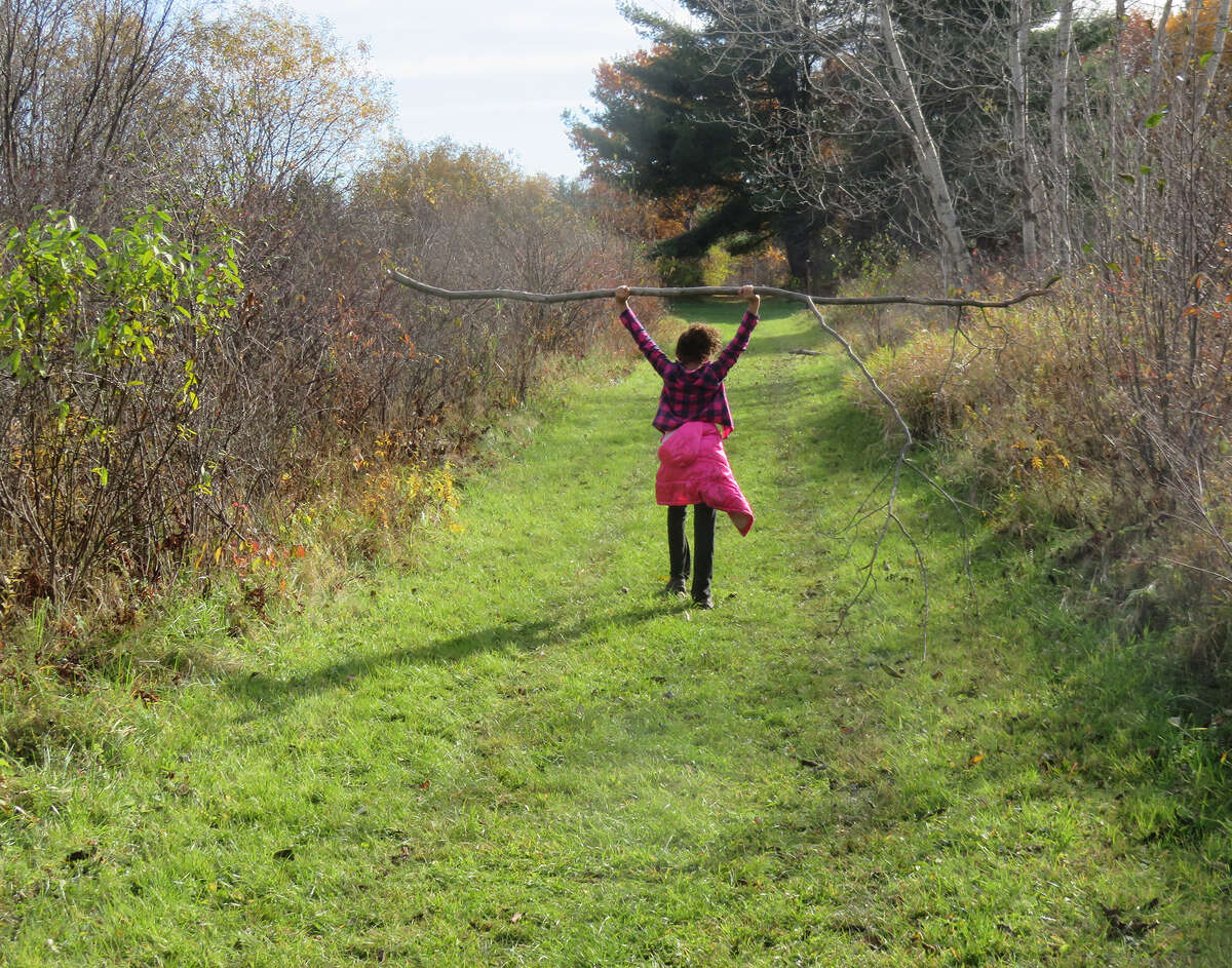 A feat of strength on the North Loop Trail as Little Wren carries her 10-foot stick. (Herb Terns / Times Union)