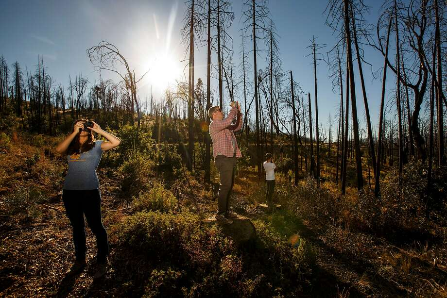Leigh Madeira (left) and Zach Knight, two founders of Blue Forest Conservation, tour an area near Yosemite National Park scorched in 2013. Photo: Marcus Yam / Los Angeles Times