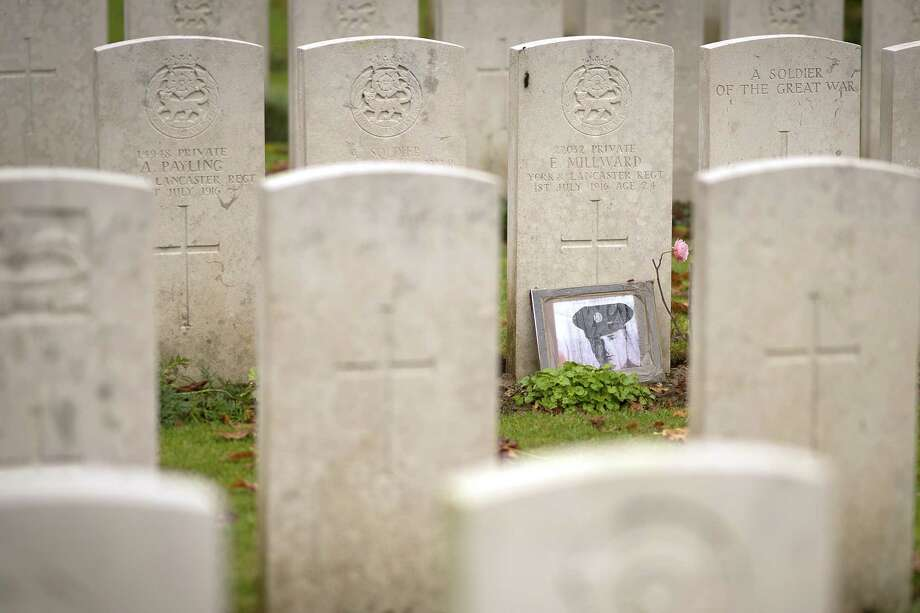 ALBERT, FRANCE - NOVEMBER 07: A photograph of a WW1 soldier stands next to a headstone at Blighty Valley British Military Cemetery near Beaumont Hamel on November 07, 2018 in Albert, France. The Somme was one of the bloodiest battles of World War One with more than one million casualties over 141 days. The fighting began just before 7.30am on the morning of July 1, 1916 and was to become known as the allies bloodiest day. The centenary of the end of World War One will be marked this Sunday with commemorations and services of remembrance by people around the world. (Photo by Christopher Furlong/Getty Images) Photo: Christopher Furlong / 2018 Getty Images