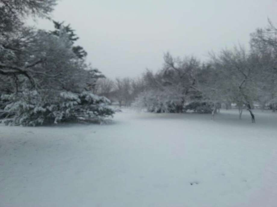 Texas Parks and Wildlife's Gene Howe Wildlife Management Area shared this photo on Monday, Nov. 12, 2018, of about 3 inches of snow. Photo: Texas Parks And Wildlife - The Gene Howe Wildlife Management Area