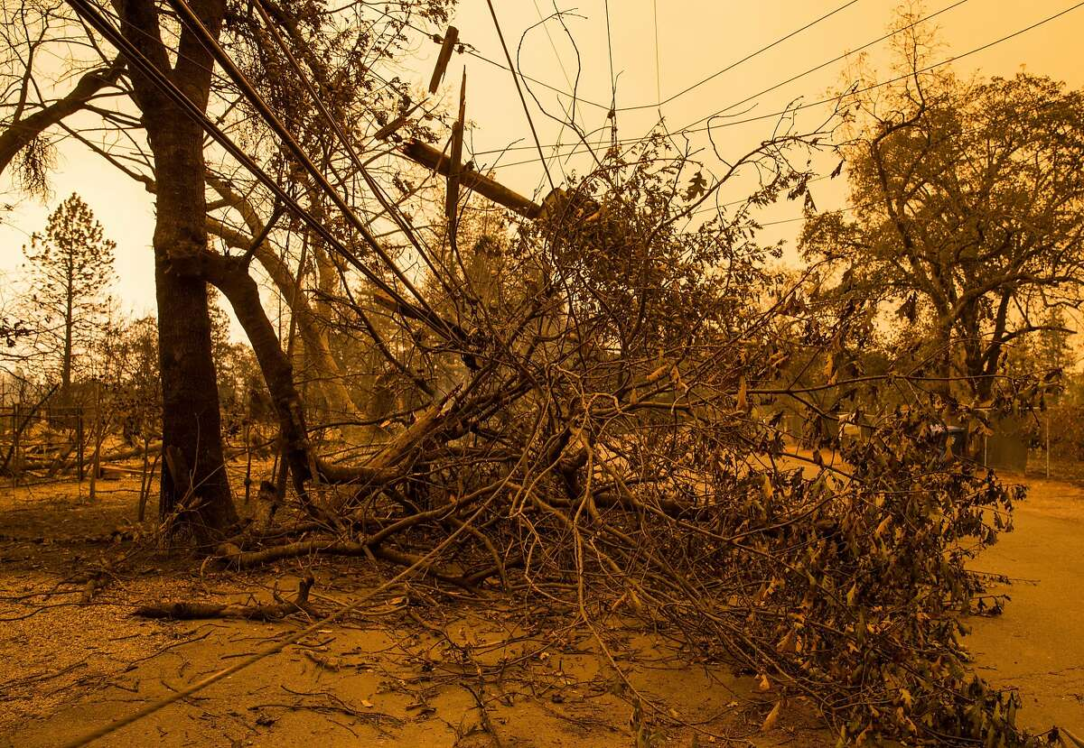 Trees and power lines intertwine down Edgewood Lane Sunday, Nov. 11, 2018 after the Camp Fire ripped through the town of Paradise, Calif.