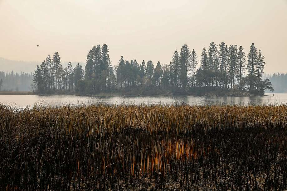 An island inside the Concow Reservoir is seen days after the Camp Fire tore through the area and displaced residents in Concow, California, on Tuesday, Nov. 13, 2018. A resident named Scott (declined last name) and his family fled into the water as the fire raged through their neighborhood. They were also able to save their 90-year-old neighbor by putting him in a boat and bringing him to shore on the other side. Photo: Gabrielle Lurie / The Chronicle
