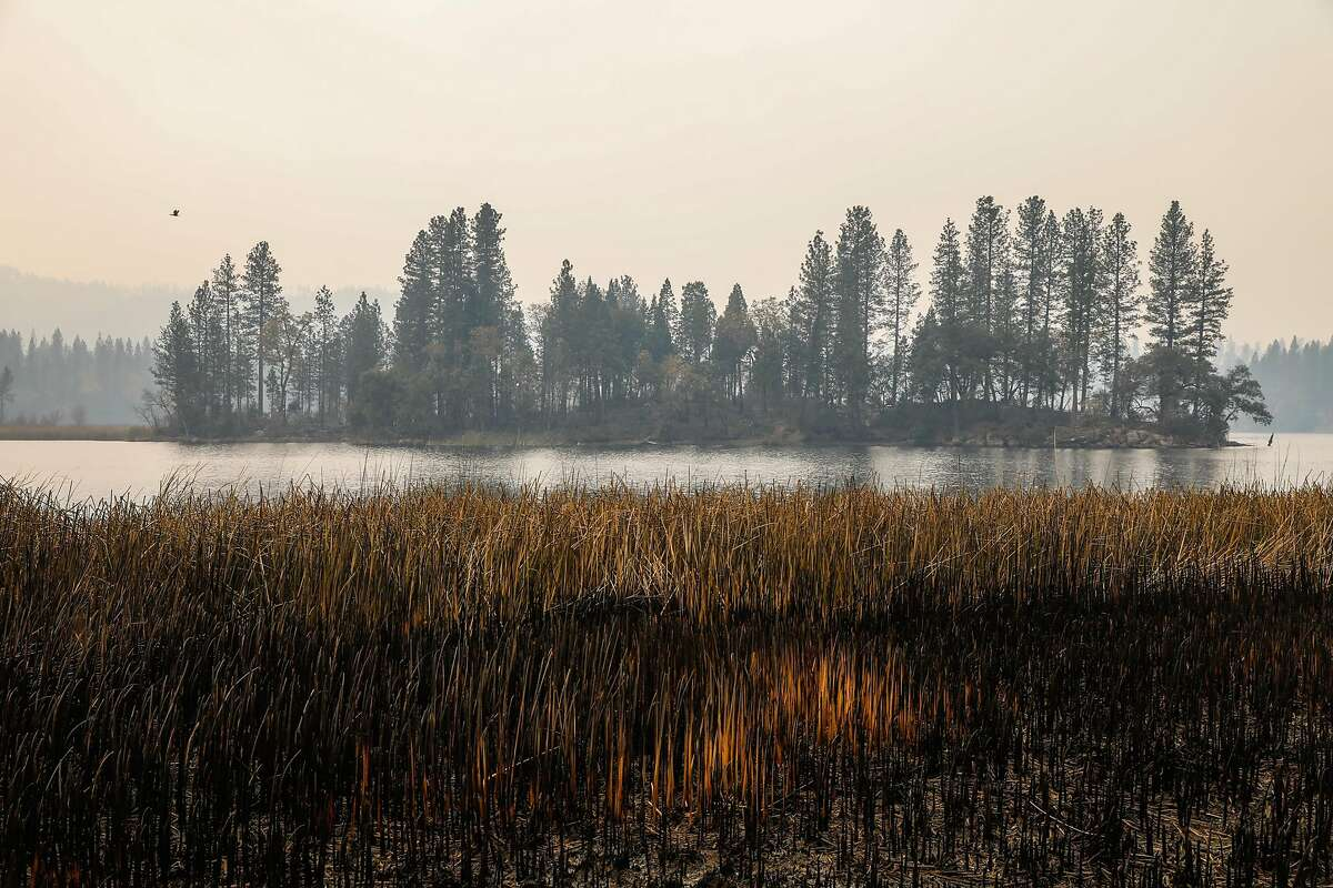 An island inside the Concow Reservoir is seen days after the Camp Fire tore through the area and displaced residents in Concow, California, on Tuesday, Nov. 13, 2018. A resident named Scott (declined last name) and his family fled into the water as the fire raged through their neighborhood. They were also able to save their 90-year-old neighbor by putting him in a boat and bringing him to shore on the other side.