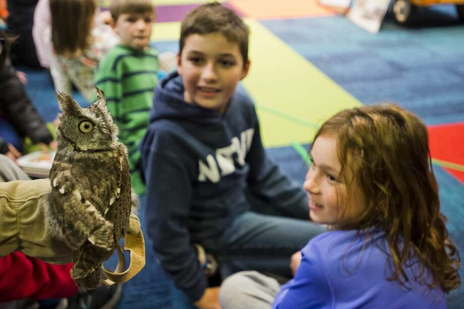 Barb Rogers with the Wildlife Recovery Association gives children a close-up look at a live owl during a presentation as part of Harry Potter Week at the Grace A. Dow Memorial Library on Thursday, Nov. 8, 2018. (Katy Kildee/kkildee@mdn.net) Photo: (Katy Kildee/kkildee@mdn.net)
