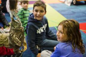 Barb Rogers with the Wildlife Recovery Association gives children a close-up look at a live owl during a presentation as part of Harry Potter Week at the Grace A. Dow Memorial Library on Thursday, Nov. 8, 2018. (Katy Kildee/kkildee@mdn.net)