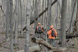 Jim Schmitt, 54, right, of New Milford, and Ralph Mancini, 52, of Danbury, hunt deer in the Skiff Mountain Wildlife Management Area in Kent, Conn, on Friday, November 21, 2014.