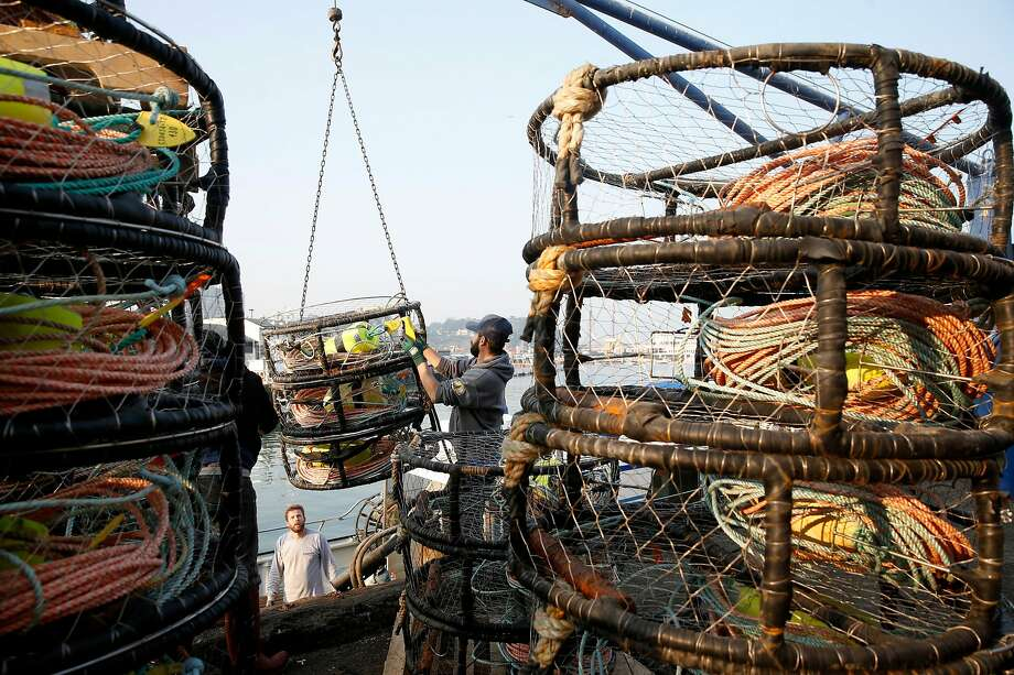 The crew of the New Rayann loads crab pots on the deck of the fishing boat at Pier 45 for the opening of the commercial crab season in San Francisco, Calif. on Wednesday, Nov. 14, 2018. Photo: Paul Chinn / The Chronicle