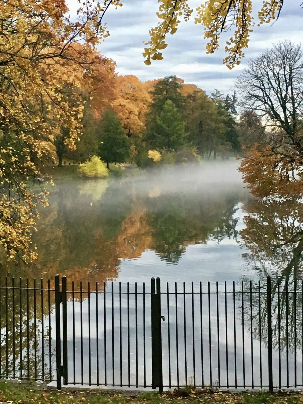"""The mist atop Albany's Washington Park Lake is taken while walking, by Terry Gavin, Albany. """"My absolute favorite place to walk,"""" says Gavin."""