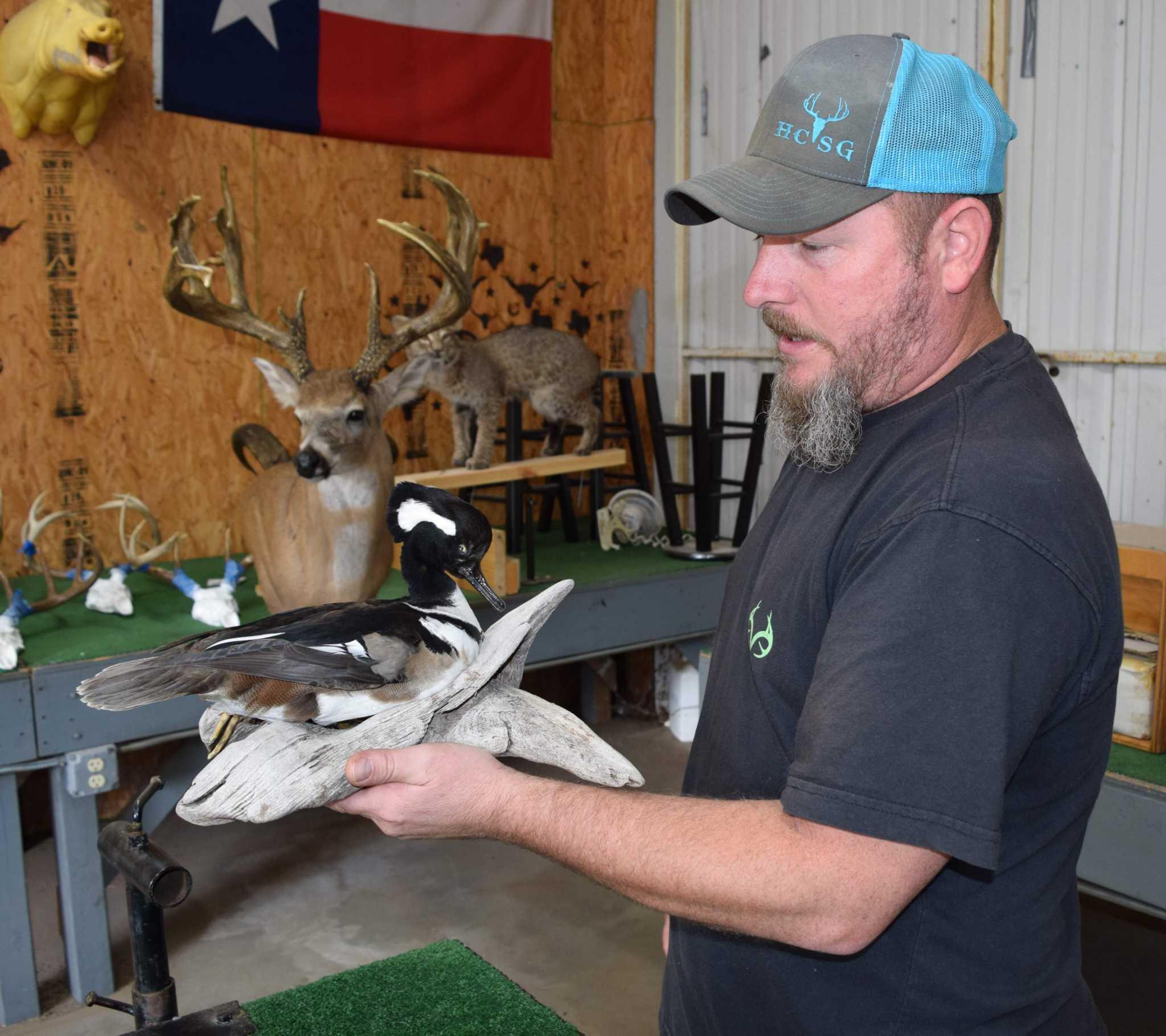 Veteran Taxidermist Trains Artisans Preserving Hunting