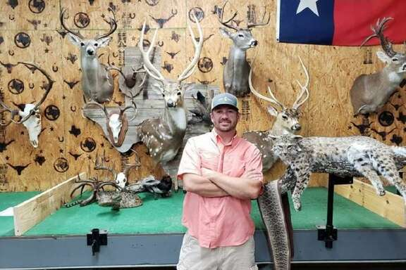 Some of the works created after more than two decades of honing his taxidermy skills adorn the walls and work tables at the Lone Star State School of Taxidermy in Llano. Photo Courtesy of the Lone Star State School of Taxidermy