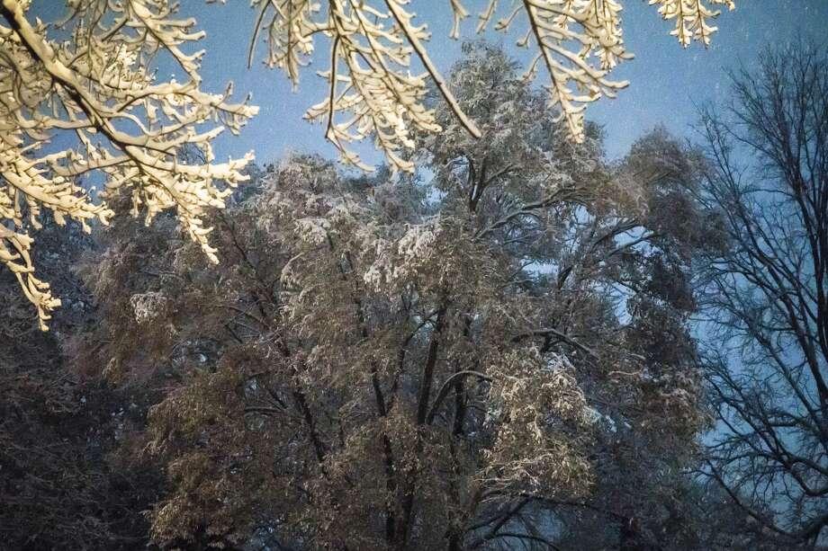 Snow falls on the evening of Thursday, Nov. 15, 2018 in Midland. (Katy Kildee/kkildee@mdn.net) Photo: (Katy Kildee/kkildee@mdn.net)