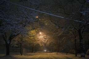 Snow falls on the evening of Thursday, Nov. 15, 2018 in Midland. (Katy Kildee/kkildee@mdn.net)