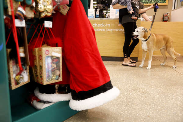 A dog waits to be groomed near some items from the Holiday Tails Collection at a Petco Animal Supplies Inc. store in Seminole, Florida, U.S., on Thursday, Nov. 15, 2018.