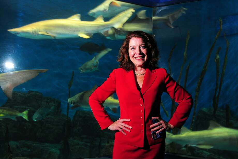 Maureen Hanley is the new president and CEO of the Maritime Aquarium, seen here in front of the aquarium's shark tank in Norwalk, Conn. Nov. 13, 2018. Photo: Ned Gerard / Hearst Connecticut Media / Connecticut Post