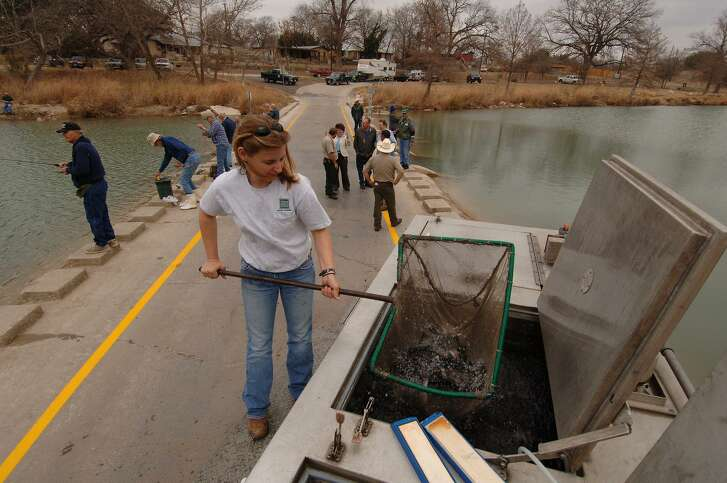 Beginning Nov. 30, Texas' inland fisheries staff will stock more than 320,000 10- to 12-inch rainbow trout into 170 ponds, city and county and state park ponds as well as some river tailraces as part of the state's annual winter put-and-take trout stocking program.